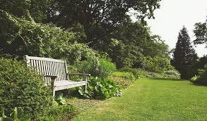 low maintenance garden design uk