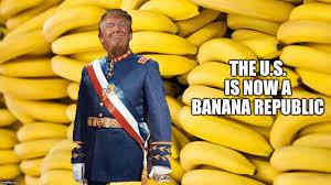 Image result for banana republic gif