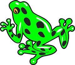 4 5inx4in Green Poison Dart Frog Bumper Sticker Decal Car Window Stickers Decals Stickertalk