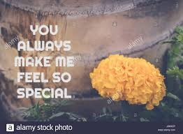 love quote yellow flower background you always make me feel