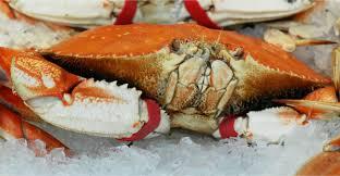 Quality Seafood - Historic Los Angeles ...