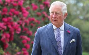 Prince Charles criticised after becoming patron of homeopathy group