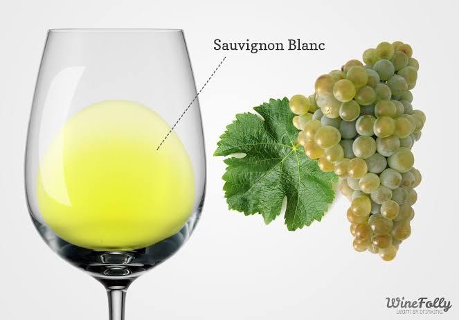 "Image result for Sauvignon Blanc"""