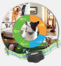 Total Dog Fence Door Proofing Solutions The Invisible Fence Brand