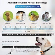 Kd 661 Wireless Dog Fence With Training Flags Hoocute Com