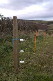 Electric Fencing For Sheep Electric Fencing Direct