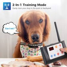 2 In 1 Wireless Electric Dog Fence Training Ninja New