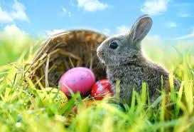 Easter Egg Hunts for Long Island Kids, 2019 | MommyPoppins ...