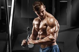 best tricep workout for men 8 power