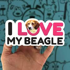 The Pawp Shopi Love My Beagle Sticker Beagle Dog Decal For Car 6 X2 79 Die Cut Super Durable Beagle Vinyl Sticker Water Resistant Protective Laminate A Perfect Gift For A Beagle Mom Or Beagle