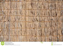 41 Fence Made Palm Leaves Photos Free Royalty Free Stock Photos From Dreamstime