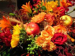 flower wallpaper thanksgiving sunflower