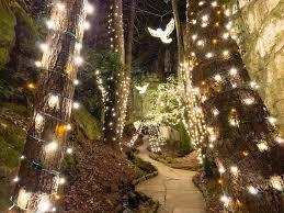 lights and tree displays near atlanta