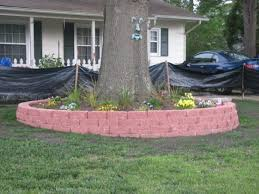 diy landscaping around trees here