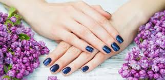 nails spa nail salon gainesville 32608