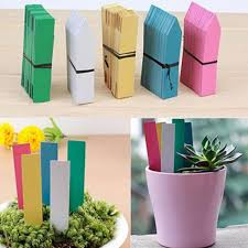 plant container accessories pots