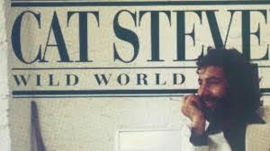 Blend: Wild World - Cat Stevens & Maxi Priest - YouTube
