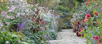 How To Create An English Cottage Garden Palmers Garden Centre