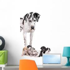 Latitude Run Great Dane Dog Peel And Stick Graphic Wall Decal Wayfair