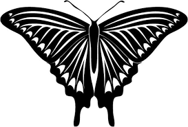 Insect Car Decals Car Stickers Butterfly Car Decal 17 Anydecals Com