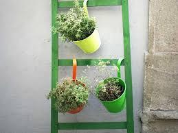 Vertical Garden Ideas Saga