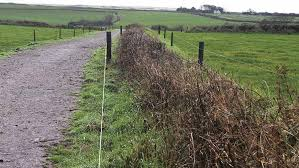 How To Put Up An Effective Electric Fence For Livestock Farmers Weekly