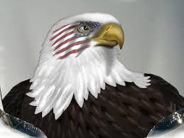 American Flag Bald Eagle Hood Vinyl Decal 43 Etsy