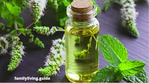 best essential oil brands 2020