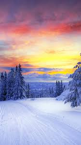 winter sunset wallpaper phone