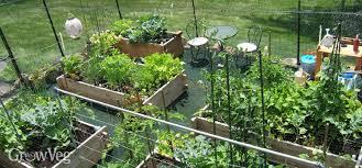 vegetable garden design choosing the