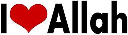Amazon Com I Love Allah Sticker God Muslims Islam Heart Arabs Decal Vinyl Bumper Car Asmaul 2 Wx8 L Home Kitchen