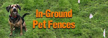 Outdoor Dog Fences Pet Containment Systems Dog Fence Supplies
