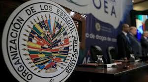 Mundo | New York Times responde a la OEA y ratifica publicación que  cuestiona elección 2019 en Bolivia