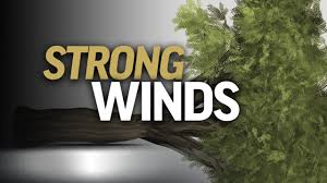 Image result for high winds,