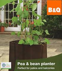 vegetables crops flower plant herbs