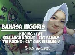 quotes ngawoer home facebook