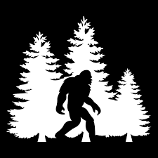 Amazon Com Bigfoot Trees Forest Vinyl Decal Sticker Car Truck Van Suv Window Wall Cup Laptop One 5 5 Inch White Decal Mks0678 Automotive