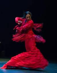 """Résultat de recherche d'images pour """"flamenco festival"""""""