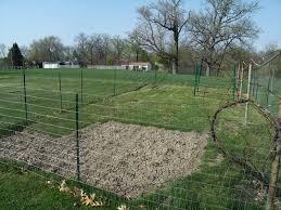 Wire Mesh Garden Fence Garden Design Ideas