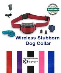 Petsafe Stubborn Stay Play Wireless Fence Collar Pif00 13672 Free Strap Ebay