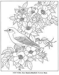 Vogel En Bloemen Kleurplaat Kleurplaten Bloem Kleurplaten
