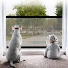 Advanced Retractable Pet Dog Mesh Gate Adjustable Fence Screen Thefansunited