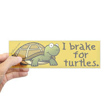 Decals Bumper Stickers Automotive I Brake For Turtles Bumper Sticker Cafepress 10x3 Rectangle Bumper Sticker Car Decal