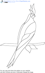 free cockatiel pattern get it and more