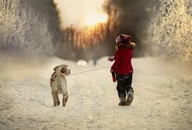 Image result for walk with a dog winter
