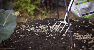 spring garden preparation guide