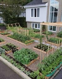 backyard vegetable gardens 21