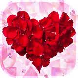 Cánh hoa hồng Hình Nền Động 4.0 Tải về APK Android | Aptoide