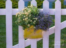 White Picket Fence Flower Basket Photograph By Dale Powell