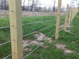 Justice Fence Co Cable Railing Images Proview